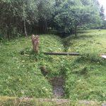 Údržba objektů a zahrady Jablonec nad Nisou